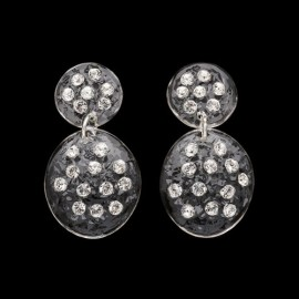 Nevada Transparent Carapace Earrings