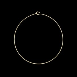 Omega Gold Plated Chain